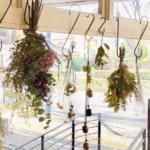 大切な人に贈りたい、お花のアトリエ「ylangylang」が京都下鴨にオープン!