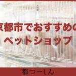 【完全版】京都市内のおすすめペットショップ7選!ペット用品の品揃え豊富