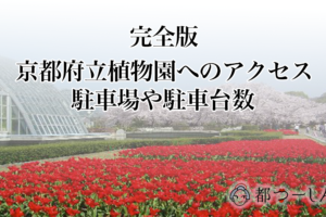 【完全版】京都府立植物園へのアクセス方法5選!駐車場や駐車台数も