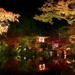 世界遺産「醍醐寺」のライトアップ見どころの全てを解説!【秋の夜間特別拝観】