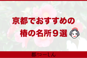 【完全版】京都市の椿が見れるおすすめの寺・寺院9選!