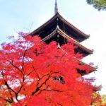 京都仁和寺のライトアップは東京カメラ部監修!スマホで本格的な撮影ができておすすめ!