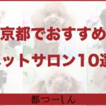 【完全版】京都でおすすめのペットサロン10選!営業時間や特徴などまとめ