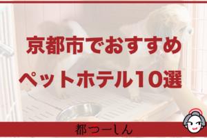 【完全版】京都市でおすすめのペットホテル10選!価格帯や特徴などまとめ