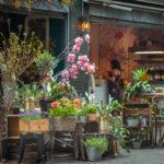 【完全版】京都北山でおすすめの花屋10選!特徴や価格まとめ!