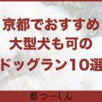 【保存版】大型犬も可!京都でおすすめのドッグラン10選!営業時間や特徴まとめ!