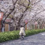 【完全版】京都市でおすすめのレンタサイクル10選!アクセス方法や価格帯などのまとめ!