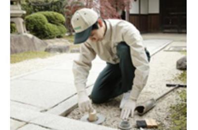 【完全版】京都でおすすめのシロアリ駆除10選!料金や見積もりなどのまとめ!